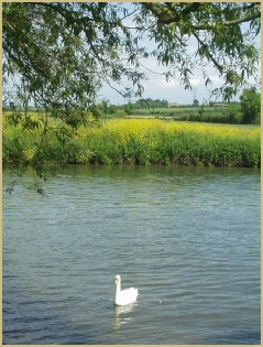 Cotswold Oxfordshire: a rural county of peaceful pastures, and the River Thames